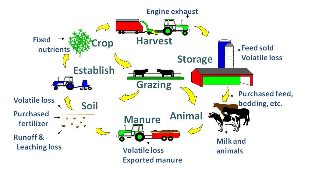 Modelo de producción integrada según la USDA