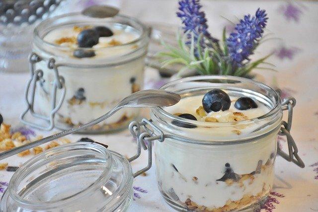 Las bacterias ácido-lácticas son las mismas que se usan para producir yogur